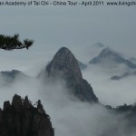Huangshan (Yellow Mt) at its best!
