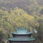 Wudang Tortise Tablet Temple