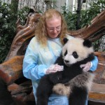 China Apr 2013 -$300 donation to research centre was worth it to experience Panda paradise-Oriel is 7mths & 30kg
