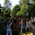 Qigong on the Village Green