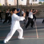 Aaron-New-Farm-Horse-Tai-Chi-Push