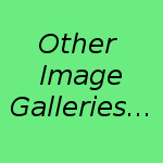 Other Image Galleries