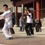 Aaron-showing-Tai-Chi-for-Youth-2-Copy